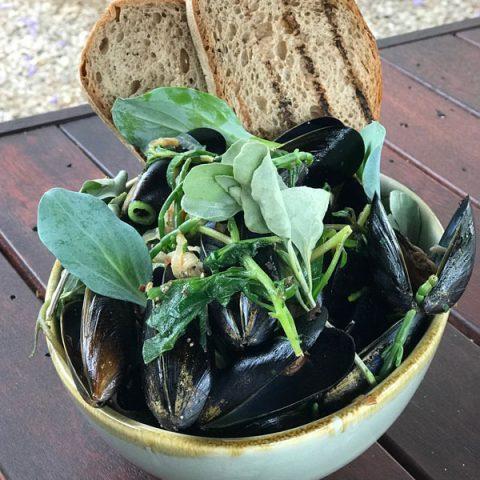 Spencer Gulf Black Mussels